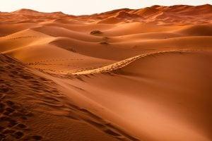 reci-na-engleskom-pustinja